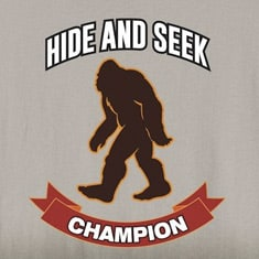 Hide And Seek Champion Shirts
