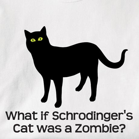 Schrodingers Cat What if schrodinger's cat was