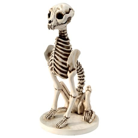 Skel E Cat Skeleton Garden Sculpture in Cast Resin