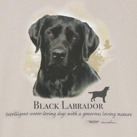 Dog Breed Shirts - Black Labrador