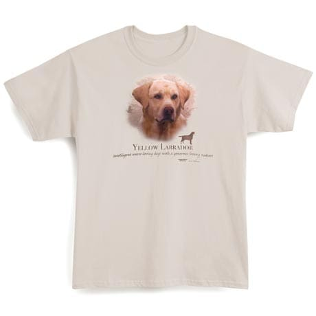 Yellow Labrador Dog Breed Cotton T-Shirt and Womens Cotton Blend Socks Sets