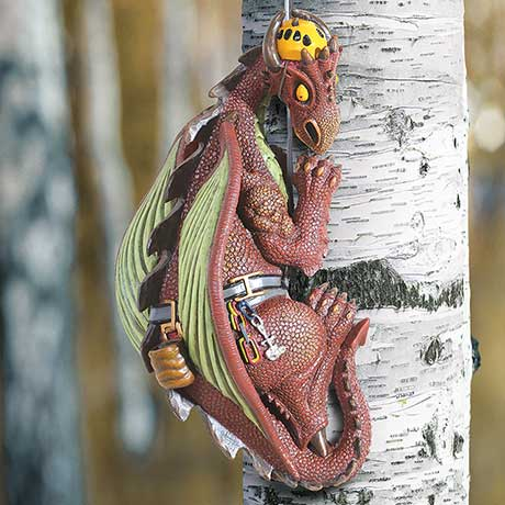 Dragon Tree Climber