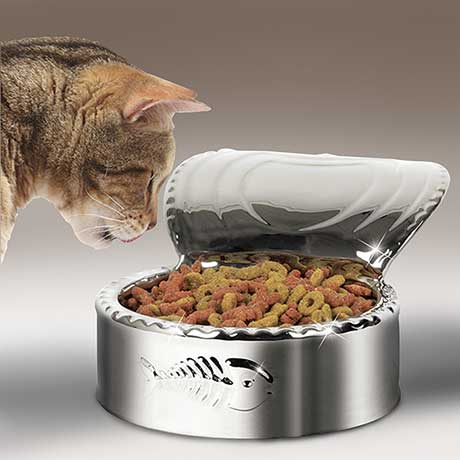 Luxury Cat Dish