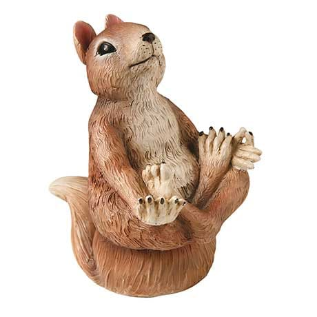 Yoga Squirrel