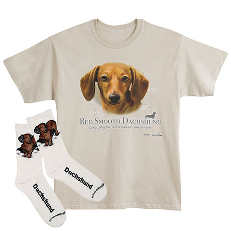 Red Dachshund Dog Breed Cotton T-Shirt and Womens Cotton Blend Socks Sets