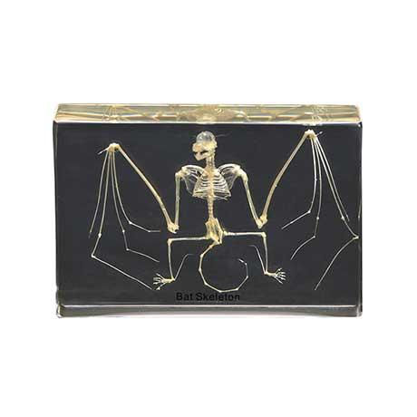 Bat Skeleton Paperweight