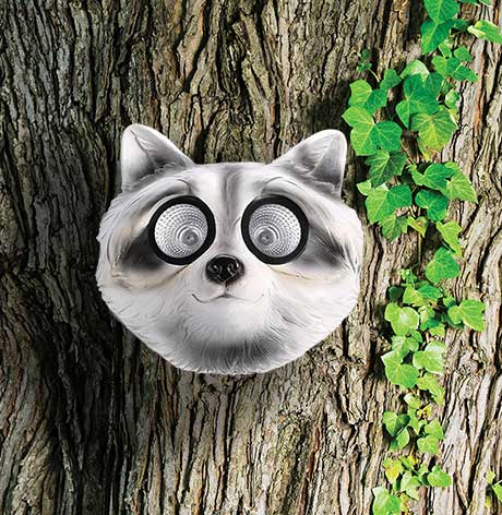 Solar Tree Faces Raccoon