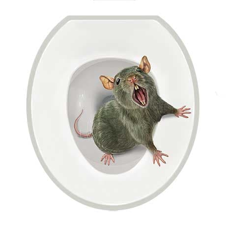 Realistic Toilet Tattoos- Sewer Rat