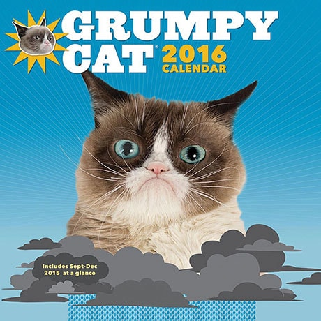 Grumpy Cat 2016 Calendar