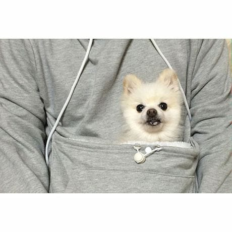 Pet Holder Hoodie