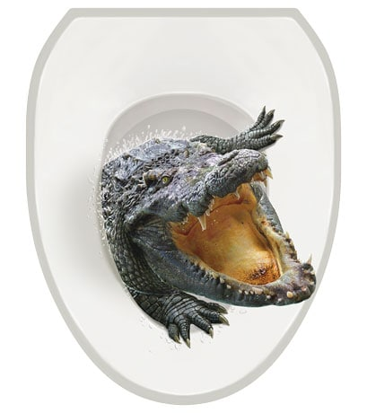 Toilet Tattoos- Alligator