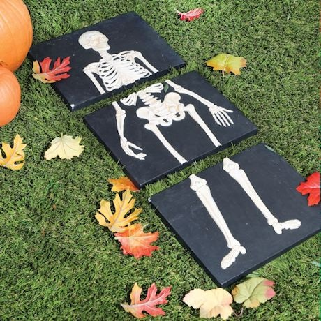 Skeleton Stepping Stone Set