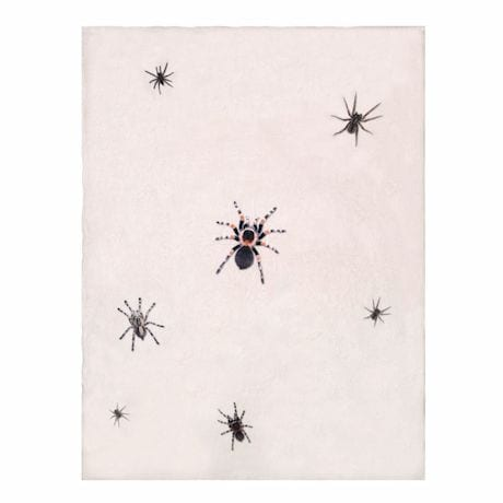 Creepy Crawly Spider Throw