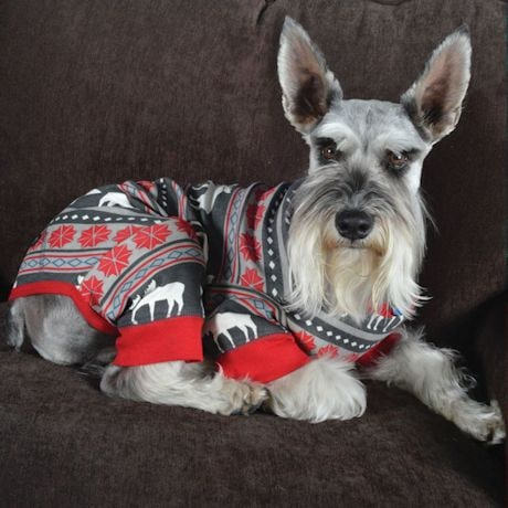 Doggy Union Suit- Moose Fair Isle