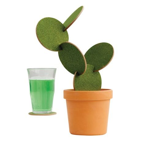 Cactus Coasters Construction Set