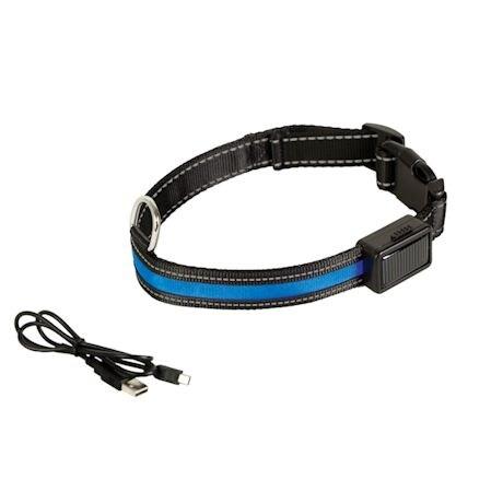 Light-Up Dog Collar And Leash Set