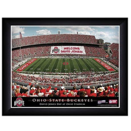 Official Personalized Pro Stadium Framed Print - College
