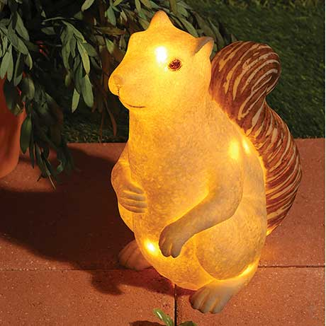 Squirrel Lamp