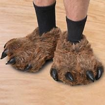 Grizzly Bear Slippers