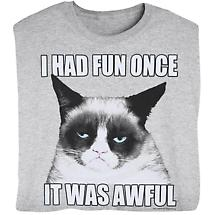 Had Fun Once Grumpy Cat T Shirt