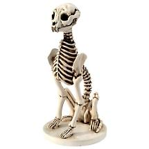 Skel E Cat Skeleton Garden Sculpture in Cast Resin