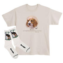 Beagle Dog Breed Cotton T-Shirt and Womens Cotton Blend Socks Sets