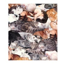 Cat Lovers Fleece Throw - Set Of 2 Pillowcase