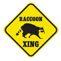 Crossing Raccoon Sign