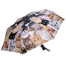 Cat Print Umbrella