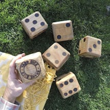 Backyard Retro Games- Dice