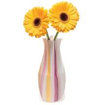 Water Vases- Karnival