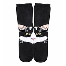 Cat Matching Socks