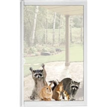 Woodland Animals Window Cling - Raccoon & Friends