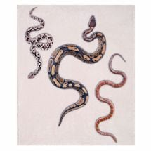 Slithering Snakes Fleece Throw