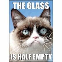 Grumpy Cat Magnet Set