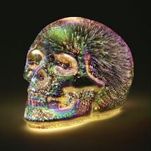 Mercury Glass Led Skull Accent Light