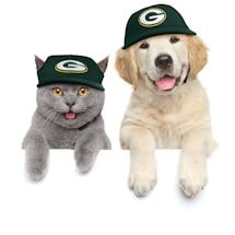 NFL Pet Hats