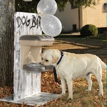 Elevated Dog Food Stand - Regular