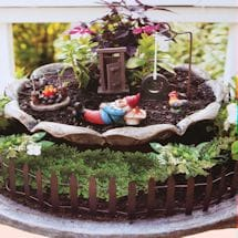Country Garden Gnome Kit