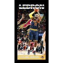 LeBron James Cleveland Cavaliers Player Profile Wall Art 9.5x19 Framed Photo