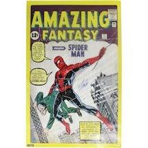 Stan Lee Amazing Spider Man 24x36 Poster ( Stan Lee Auth)