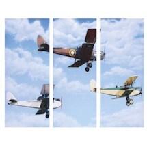 Biplane Triptych