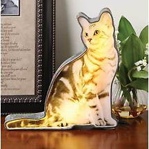 Backlit Kitten Decorative Light